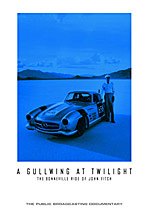 A Gullwing at Twiglight DVD